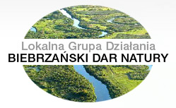 http://lgd-bdn.pl